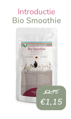 Bio Smoothie - Hermann's Creative Mix